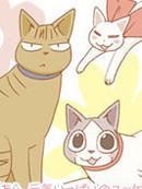 希镰仓与猫的记事簿漫画